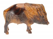 View Javalina with detail
